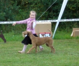 CHILD & DOG competition