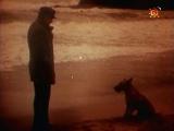 """Filma """"Rudā Maikla piedzīvojumi"""""""