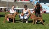 Champion's Family Ramsey & Champion's Family Rory